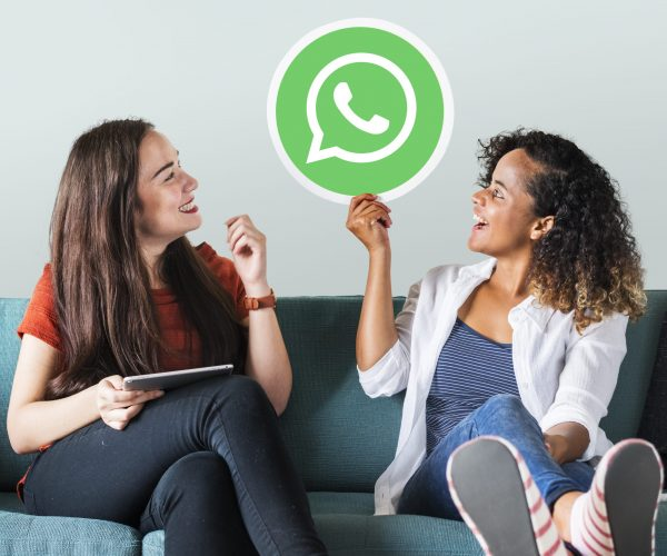WhatsApp Business multiple users