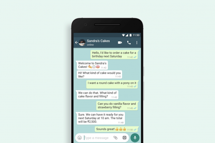 Example of someone using the WhatsApp Business Application.